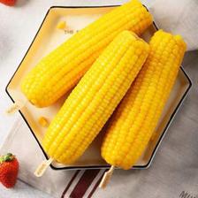 小马乐活 成人玉米真空玉米蔬菜 250g/根(成人款)  券后23.8元