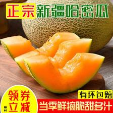 朝道臻品 新疆哈密瓜 4-5斤 ¥10.9